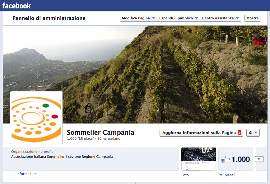 Sommelier Campania2