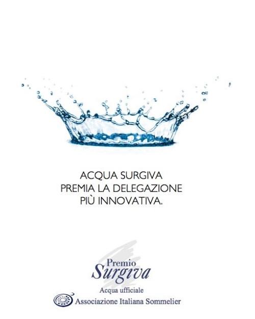 Premio_Surgiva_2013_Sito