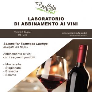 laboratorio-bufala-Fest-Vino