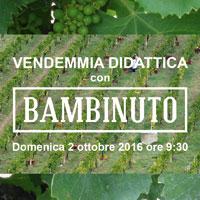 img_bambinuto_200