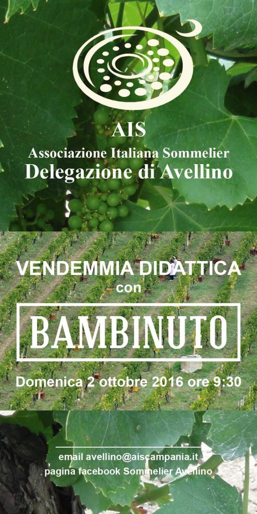 vendemmia_bambinuto_web
