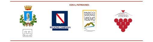 PATROCINIO-001