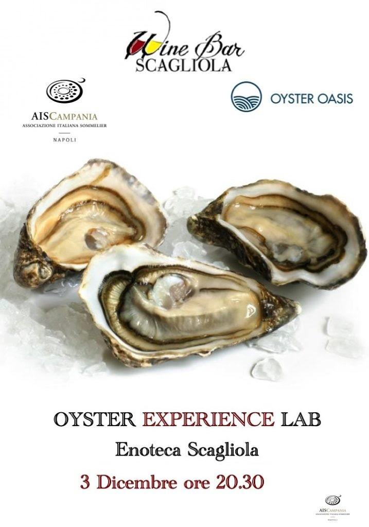 oysterexsperience